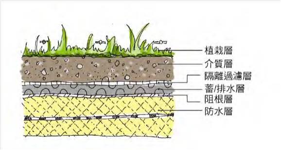 薄層型綠屋頂介紹