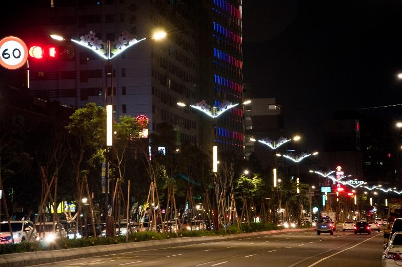 相片7-大業路櫻花路燈夜景