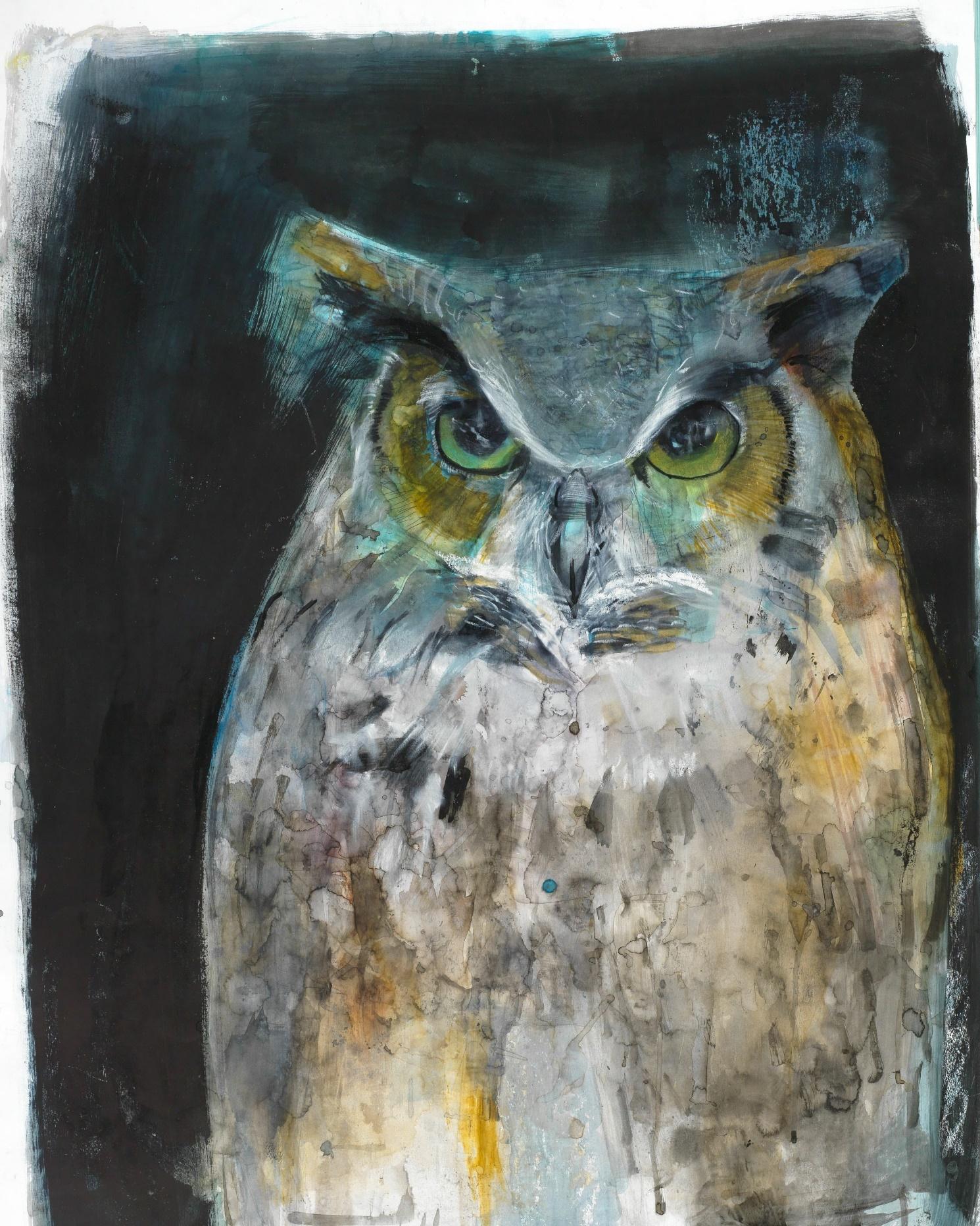 圖4. Russ Ronat作品凝視的貓頭鷹(Owl Looking)