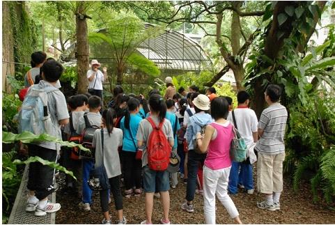 Photo 3: Feitsui Fern Garden