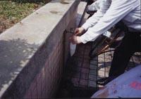 飲用水管理圖片1