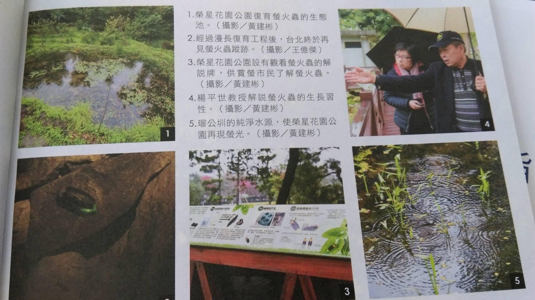 榮星花園公園再加碼推出520、521日週末夜間1900的生態池解說導覽