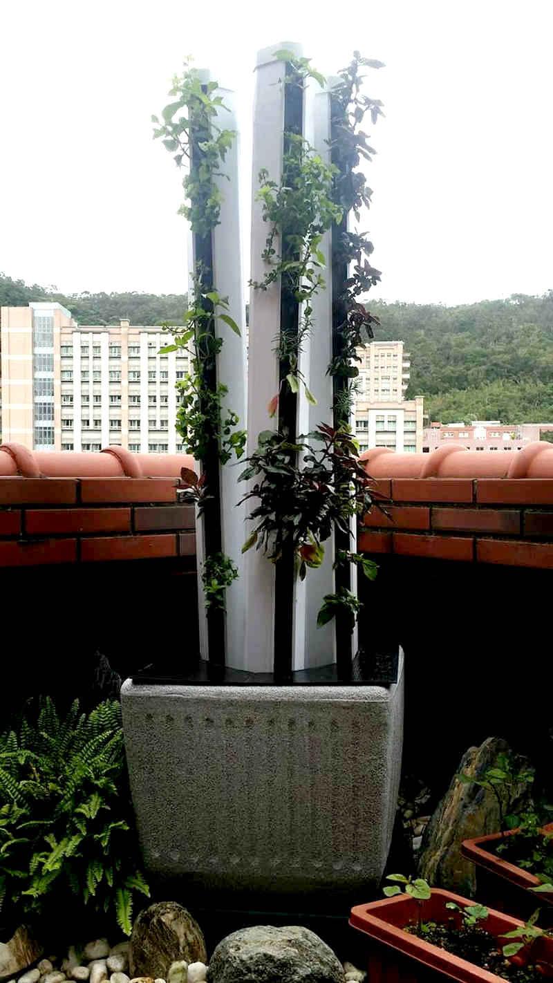 THDC盆地型垂直水耕系統