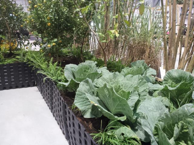 保綠植栽箱