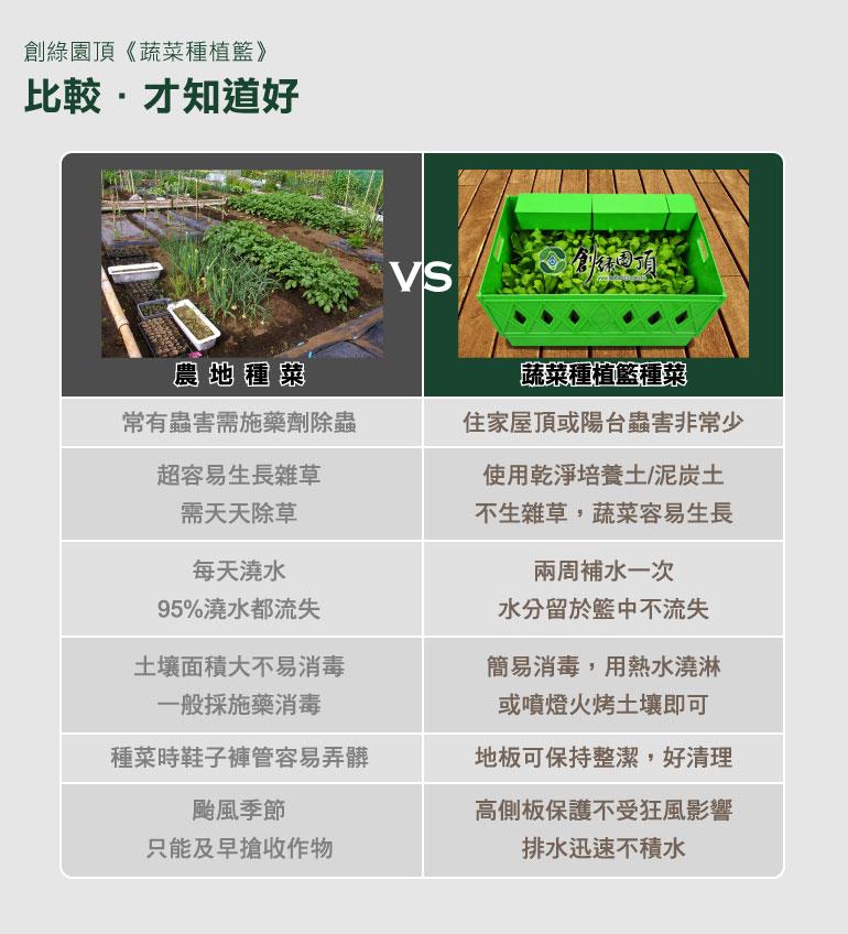 農地種菜與蔬菜種植籃種菜比較