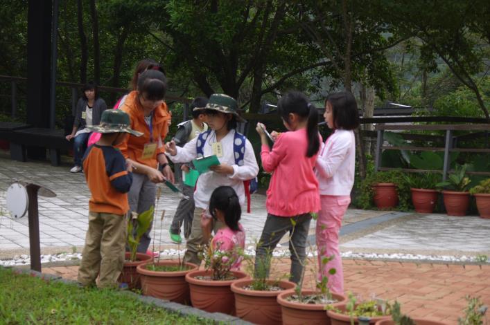 分組觀察發現各式各樣植物的種子[開啟新連結]