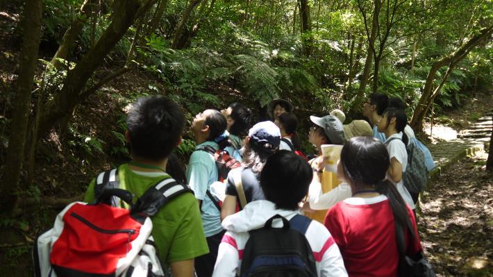 步道巡禮,探索埋藏在森林、土地的奧秘[開啟新連結]