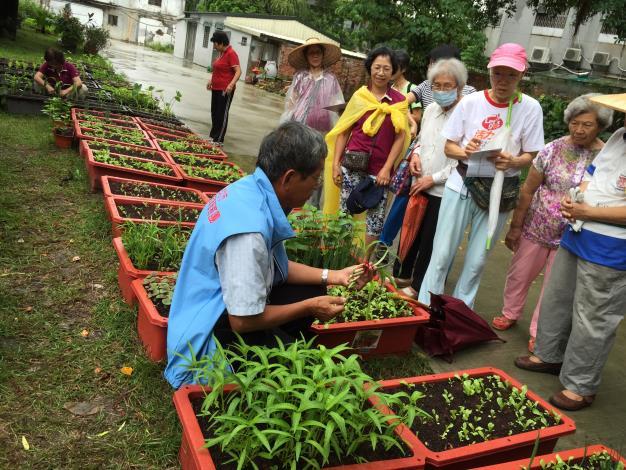 照片-講師細心說明蔬菜的栽種方式