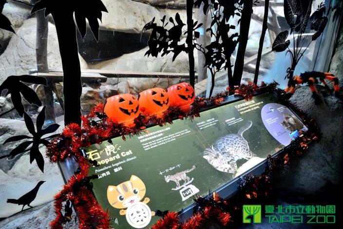 今年完聖潔布置移師臺灣動物區保育廊道