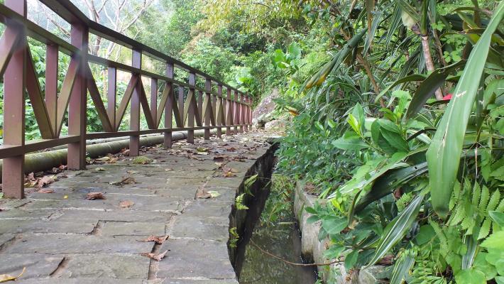 百年水圳溪水清澈