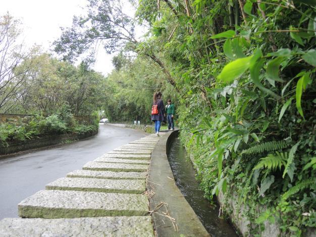 遊客悠閒散步在菁礐水圳