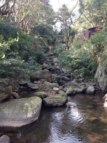 菁礐溪生態豐富