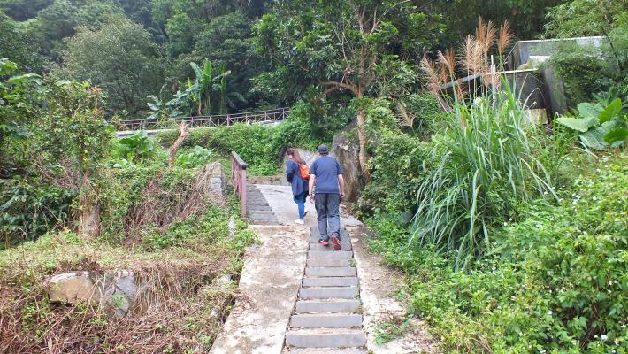 遊客悠閒散步在百年水圳