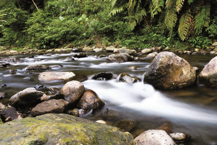 菁礐溪溪水清澈見底