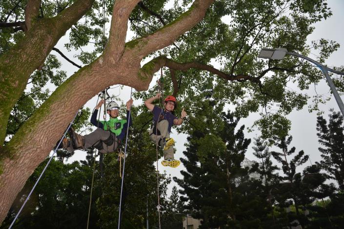公園處處長成功完成攀樹(於大安森林公園攝).[開啟新連結]
