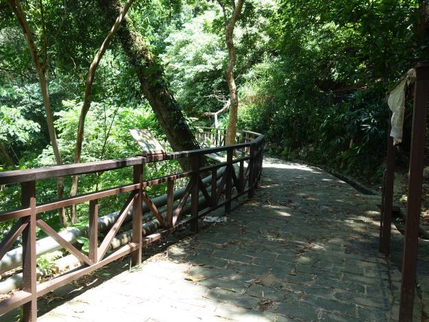 照片7 溪山百年古圳-樹蔭步道 大自然的教室