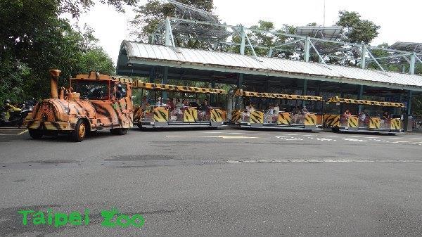 老虎斑紋列車