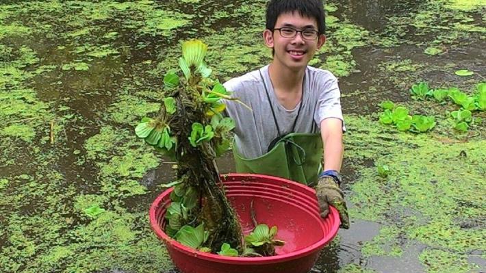 志工夥伴們協助移除生長迅速的水芙蓉[另開新視窗]
