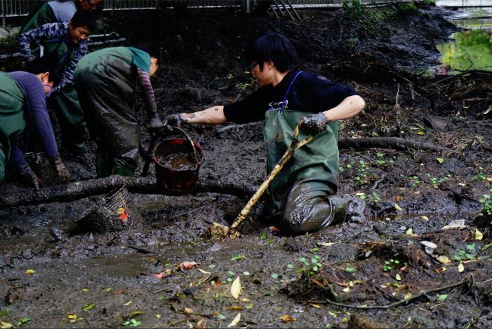 民眾藉由身體力行在泥巴裏打滾,共同恢復螢火蟲的棲地生態環境[另開新視窗]