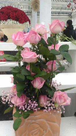 """圖4. 俏皮粉紅色的""""Pink O'hara""""。"""