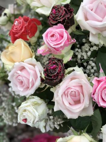圖10.玫瑰花展