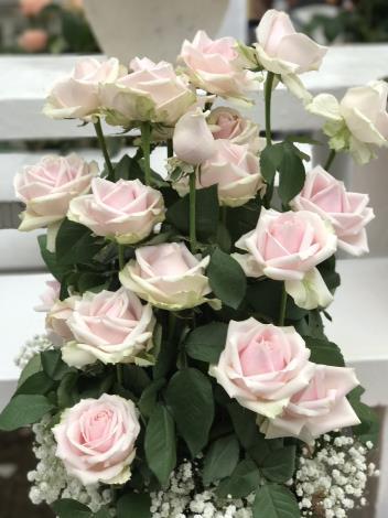 圖22.玫瑰花展