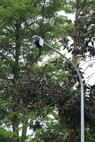 4木柵公園LED燈加裝遮光板
