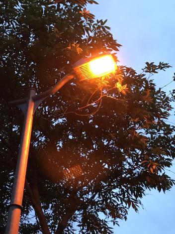 9螢火蟲專用LED燈