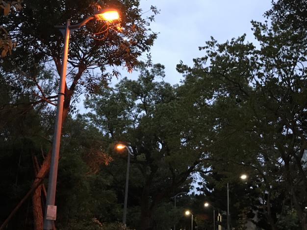 11螢火蟲專用LED燈