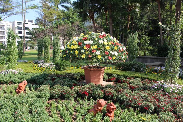 圖4.以嫁接大立菊及盆菊呈現「少年pi的奇幻漂流」之壯闊