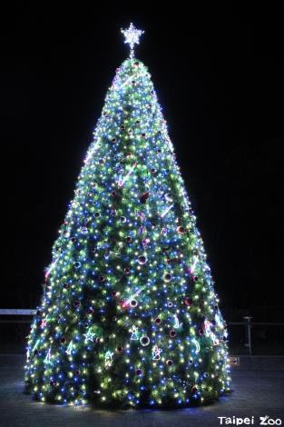動物園聖誕樹架設完成,歡迎民眾一起參加1203的聖誕點燈