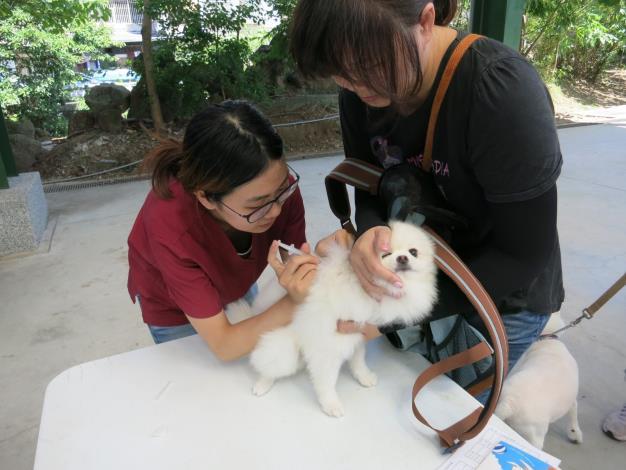 圖2. 106年北市動保處辦理狂犬病巡迴注射活動照片
