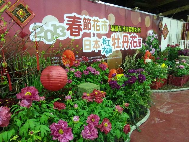2013春節花市日本松江、大根島牡丹花展1