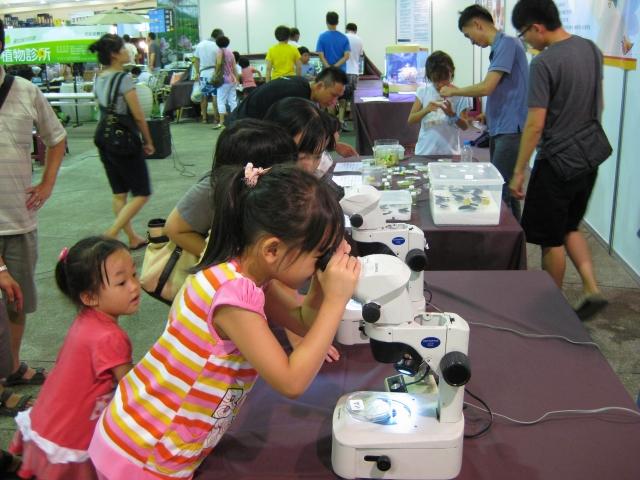 植物與昆蟲互動營活動使用顯微鏡觀察紅蜘蛛