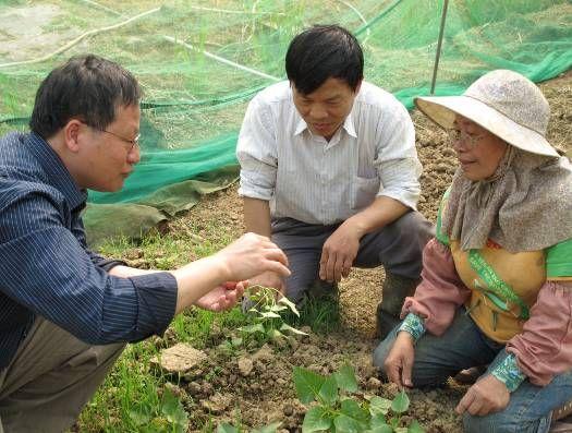 技術團隊實地輔導農戶