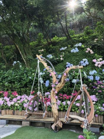 圖6-名陽匍休閒農莊繡球花打卡點-北投區農會提供[開啟新連結]