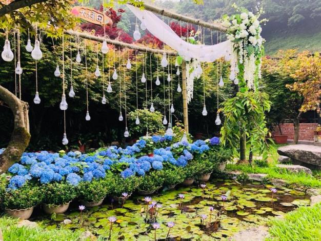 圖4-大梯田花卉生態農園打卡點-北投區農會提供[開啟新連結]