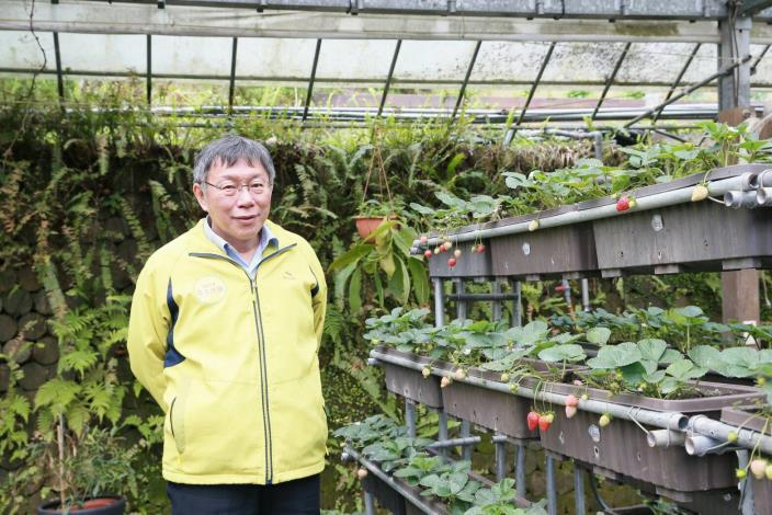 圖3、柯文哲市長與內湖產銷班以高架種植的在欉紅草莓合影。