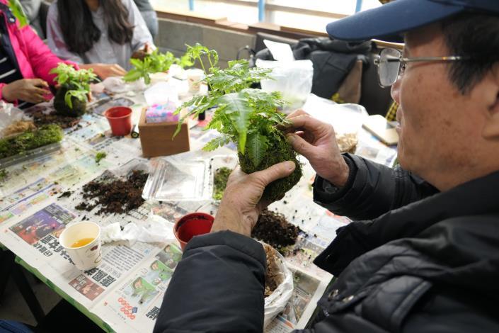 圖2.竹子湖海芋小旅行,綠色植物苔球DIY。