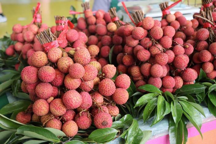 圖2.產地直送優質水果,鮮嫩多汁荔枝。[開啟新連結]