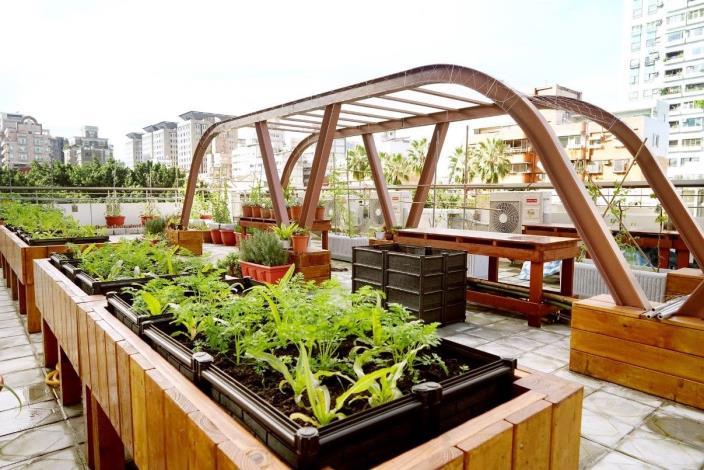 圖1.復華長青多元服務中心屋頂農園[另開新視窗]