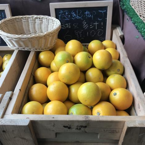 圖4.嘉義縣市週所帶來的鮮甜柳丁。