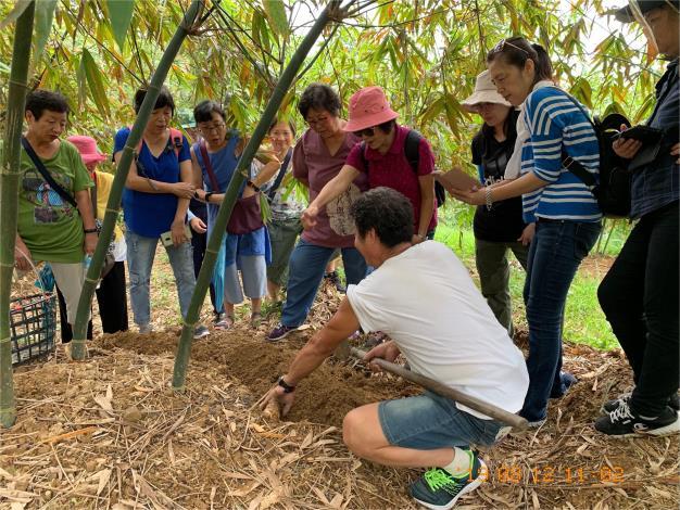 採筍體驗活動-木柵