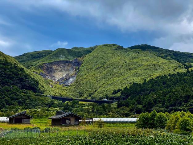 圖5、竹子湖休閒農業區位於陽明山國家公園,現為櫻花盛開期間,海芋即將於三月接力登