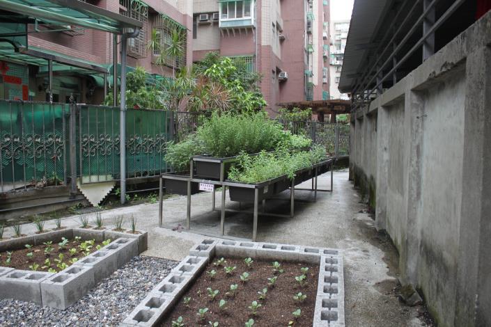 北市「社區園圃推廣補助計畫」幫您打造社區後花園 (5)
