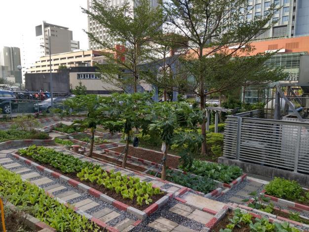 北市「社區園圃推廣補助計畫」幫您打造社區後花園 (2)