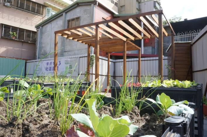 北市「社區園圃推廣補助計畫」幫您打造社區後花園 (4)