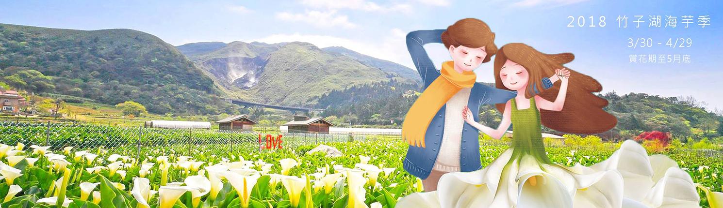 【2018海芋季】北市產業局帶你上陽明山竹子湖當網美