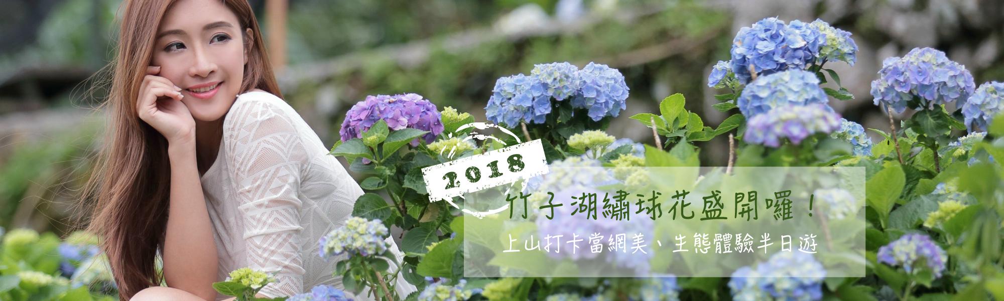 竹子湖繡球花盛開囉!上山打卡當網美、生態體驗半日遊[開啟新連結]