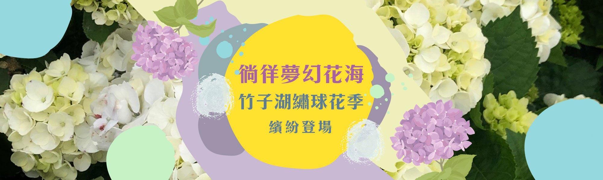 竹子湖繡球花季5月18日登場 7大地景花藝供民眾上山拍照打卡